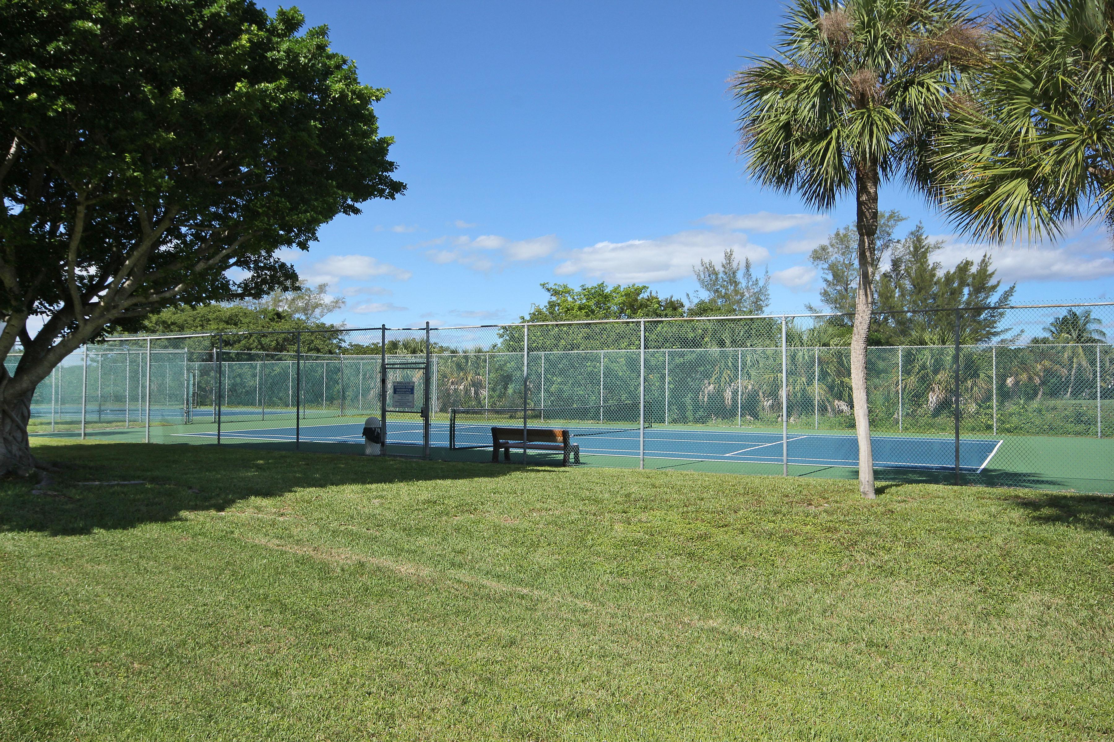 20 CP Tennis