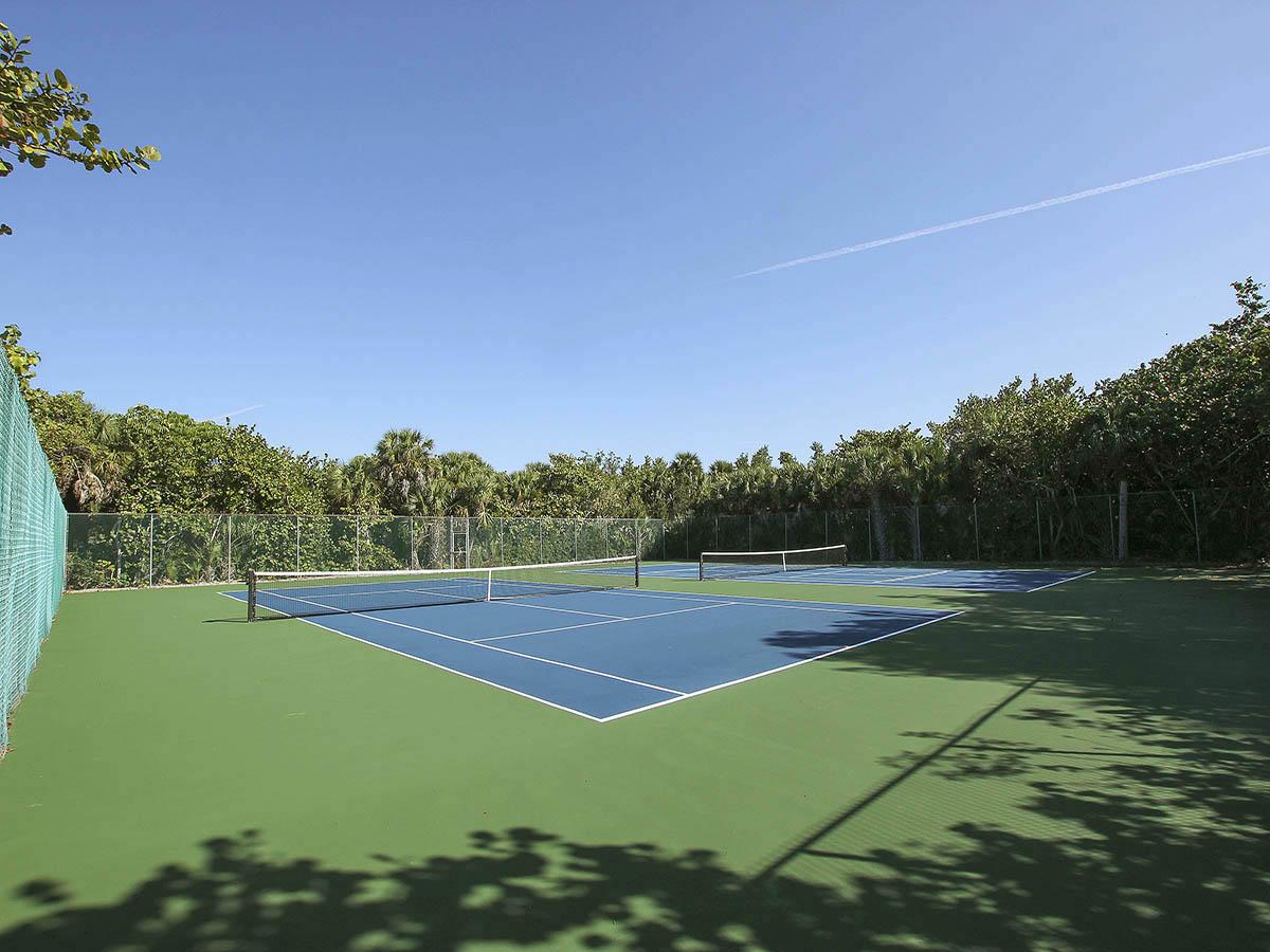 24 Tennis