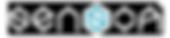 sensoa-film-drone-360VR-Logo