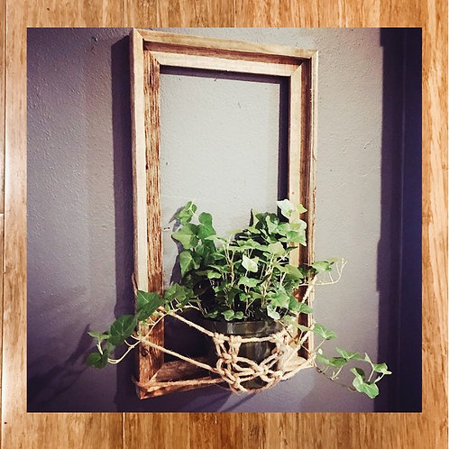Macrame wall plant holder