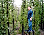 Standing on top of pole in nature.jpg