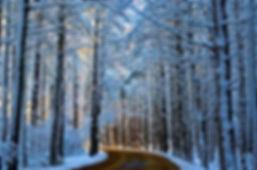 8-Old Sandwich Road-Color-2.jpg