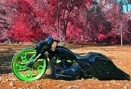 Toxic Bike.jpg