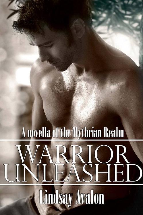Warrior Unleashed Paperback