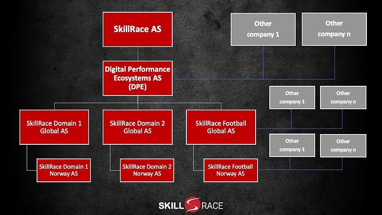 SkillRace - selskapsstruktur.jpg