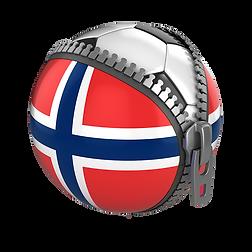 Nasjonalt utviklingsforum for fotball