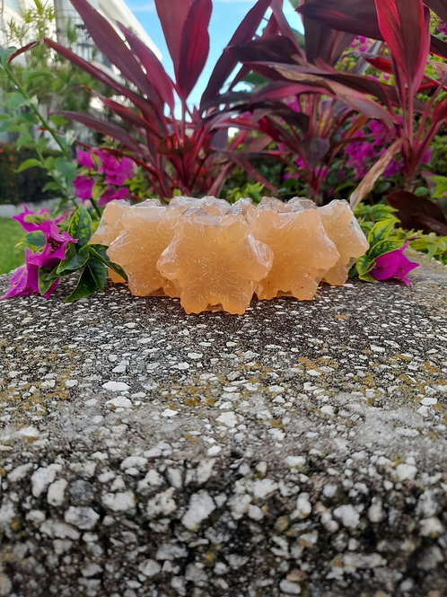 Honey Mango Soap