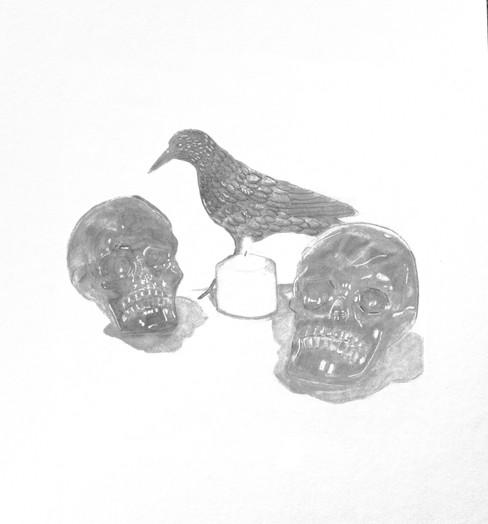 Eric Meheles, Raven and Skulls