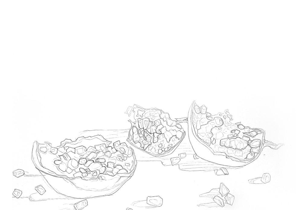 Preliminary sketch