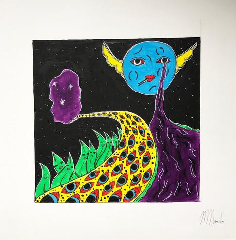 Makayla Noordam, Surrealism