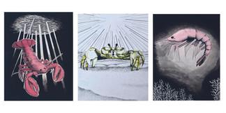 Megan Johnson, Shellfish illustration series