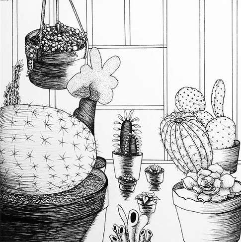 Megan Johnson, Plant Life