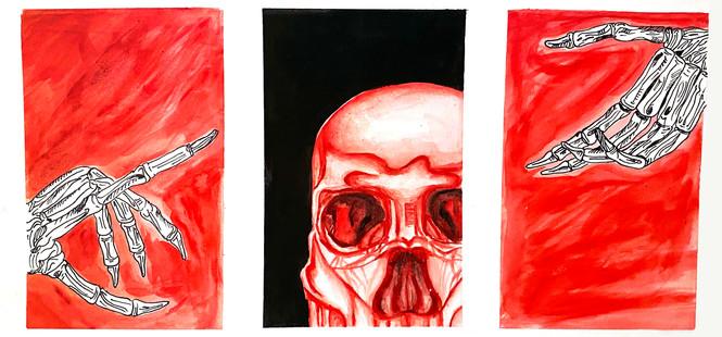 Taryn Kennedy, Skeletal Structure