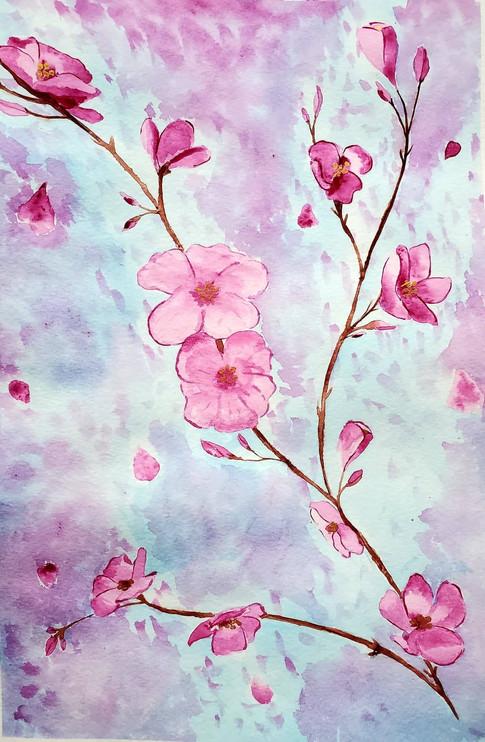 Maddie Berry, Cherry Blossoms