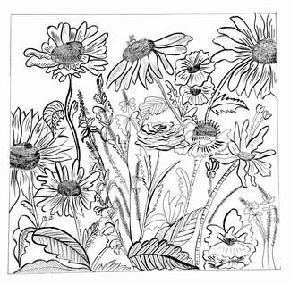 Akshita Sethi, Flowers