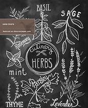 herb-prints-01.jpg