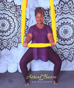 aerial_barre_with_char_willingham.png