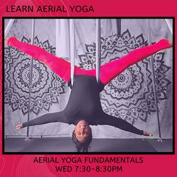 aerial_yoga_char_willingham_beginners.pn