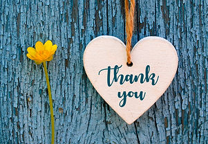 Thank You or thanks greeting card with yellow flower and decorative white heart on blue wo