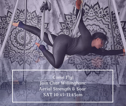 aerial_yoga_char_willingham_intermediate