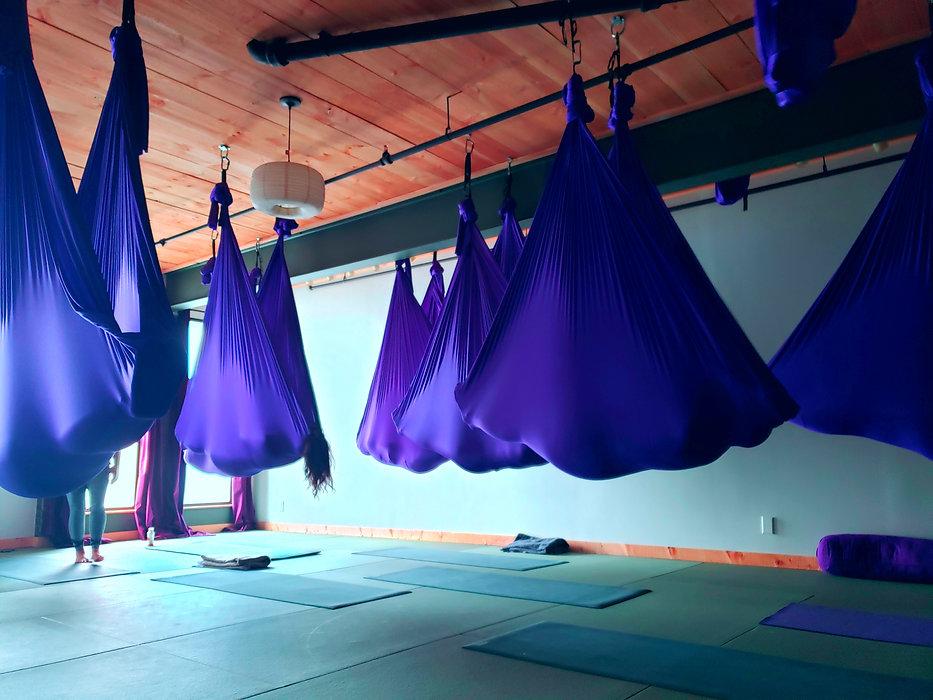 Aerial Yoga Teacher Training Char Willingham.jpg