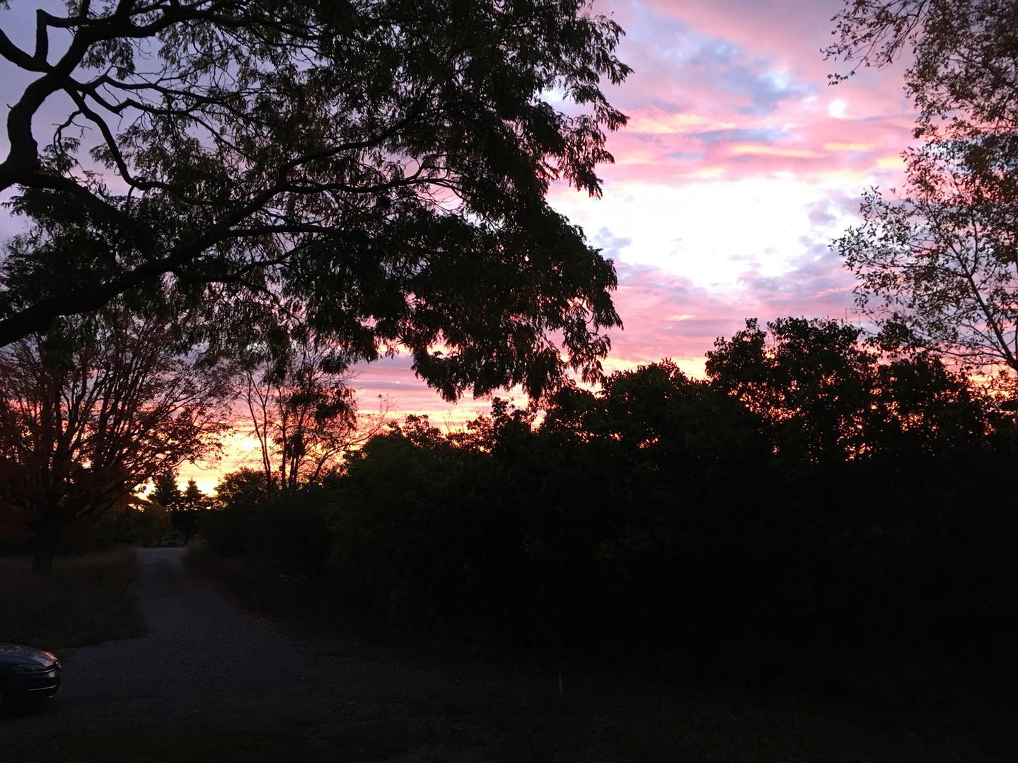 Sunrise Summer 2019-1.JPG