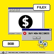Filex - BOB.png