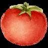 Tomato plants for sale in Framingham MA