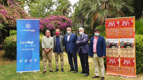 La A.A.E.T. 'Pedro Romero' ha presentado el XXVI Ciclo de Novilladas Andaluzas este mediodía