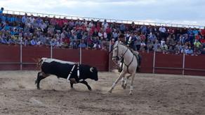 Exito y gran ambiente en el Festival Taurino celebrado en Peraleda de la Mata (Cáceres)