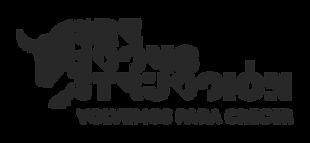 Gira-de-reconstruccion-Black.png