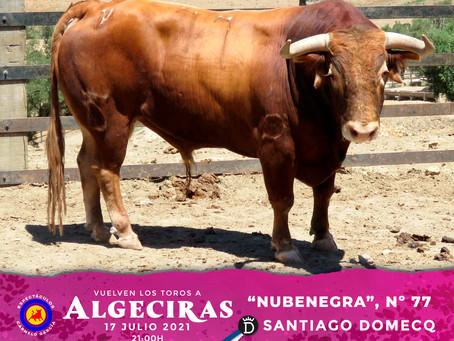 Los de Santiago domecq para Algeciras en fotos