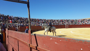 Éxito en San José del Valle