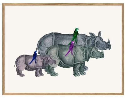 """Affiche """" Rhinos and birds"""" The Dybdahl Co"""