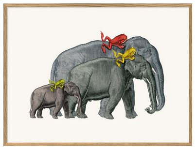 """Affiche """" Elephants and frogs"""" The Dybdahl Co"""