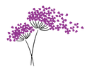 Acneology Flower Logo.png