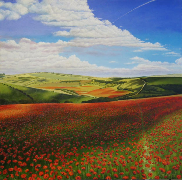 Poppy Fields & Shadows