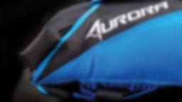 auroraDetail_handle.jpg