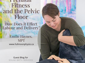 Prenatal Fitness and the Pelvic Floor - How Does it Effect Labour and Delivery?