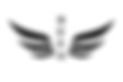 heart-wing-logo-hi_edited.png