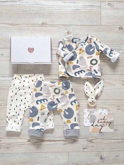 Baby-Box Min
