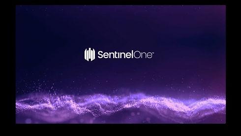 sentinelones-singularity-the-platform-to