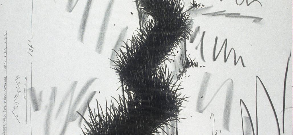 "Seeded Colorado Corridor 1982 graphite, crayon, on vellum, 30"" x 42"""