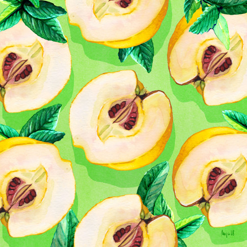QUINCES: Illustrating Giselles ingredients