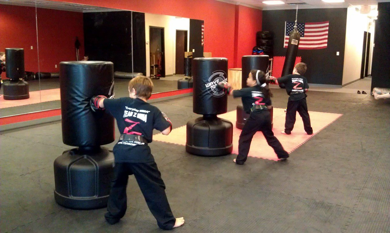 LITTLE FIGHTERS CLASS
