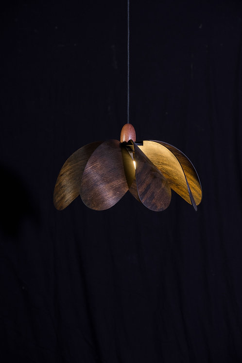 Propeller Pendant Light - Ebonised Eucalypt