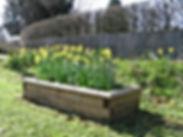 Planter at Lampool corner