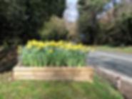 Planter at bottom of school hill