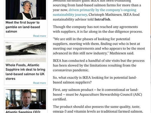 Here's what Ikea is looking for from land-based salmon suppliers - Intrafish