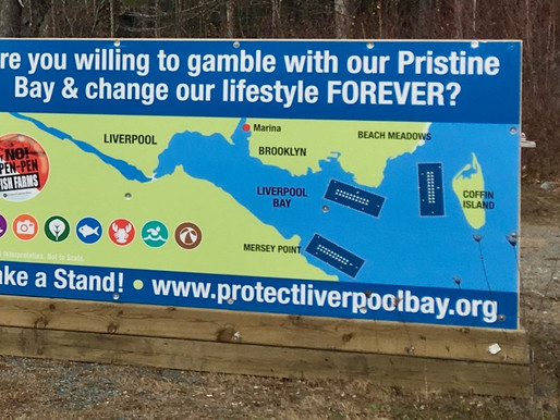 "Take a stand! Liverpool says ""no"" to fish farm gamble  